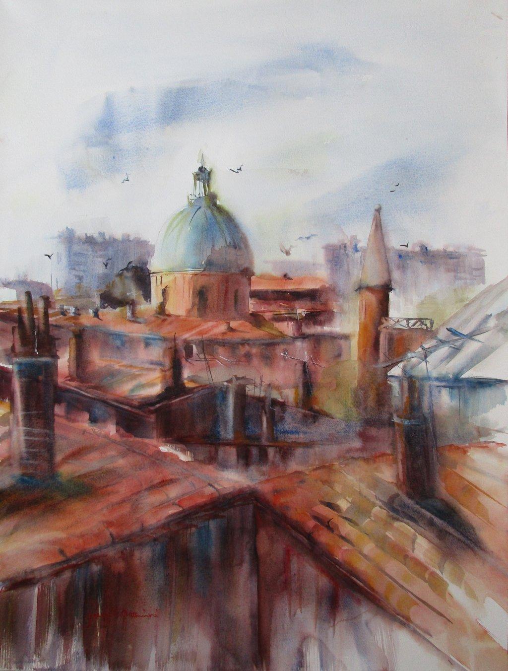 Toulouse  Les toits